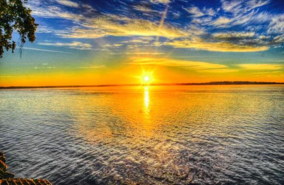 Vibrant Sun 3